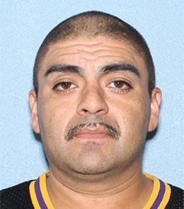 A Hispanic man with buzzed, brown hair, brown eyes, and a mustache is wearing black t-shirt with yellow and purple collar