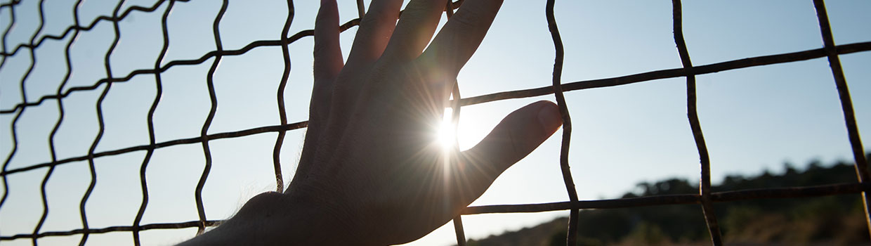 a man's hand touching a chain-linked fence; a desert landscape is on the other side of the fence