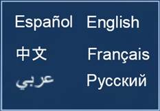Language Assistance