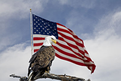 United States Flag and the American eagle