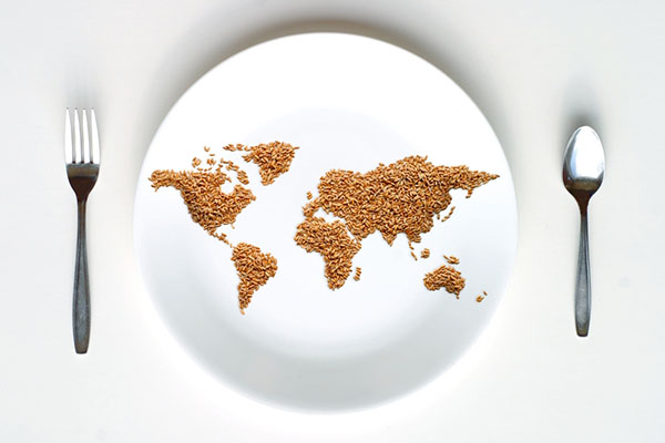 brown rice shaped into a map of the world is served on a white plate