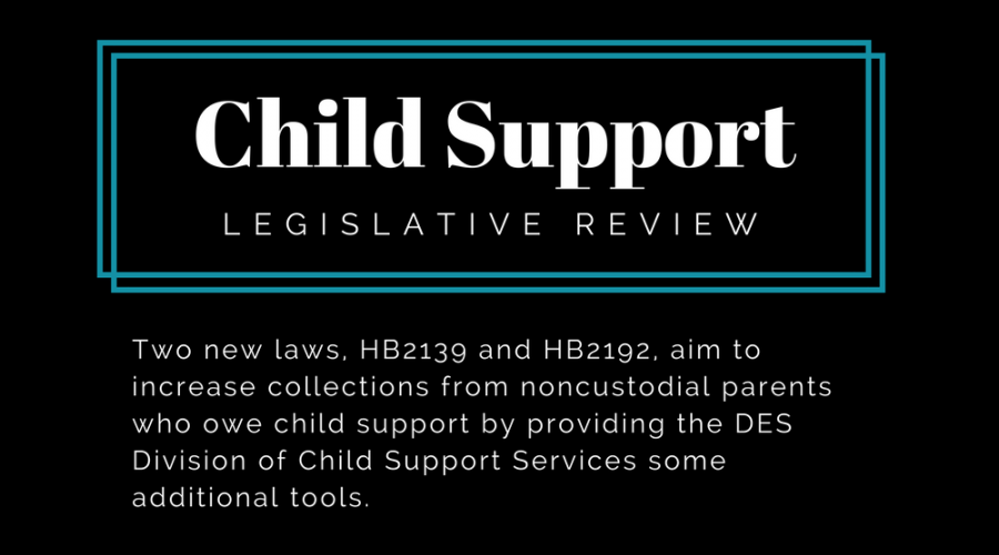 Child Support Legislative Review
