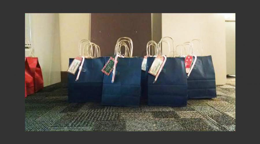 DCSS Gift Bags 1