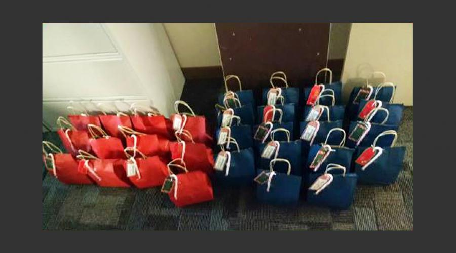 DCSS Gift Bags 2