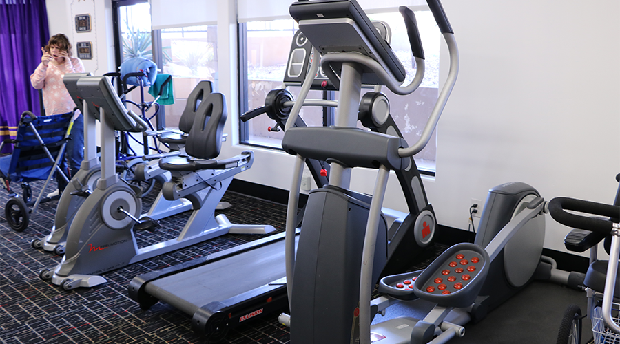 Various fitness equipment line a wall.  The equipment includes a step machine, a treadmill and two stationary bicycles.